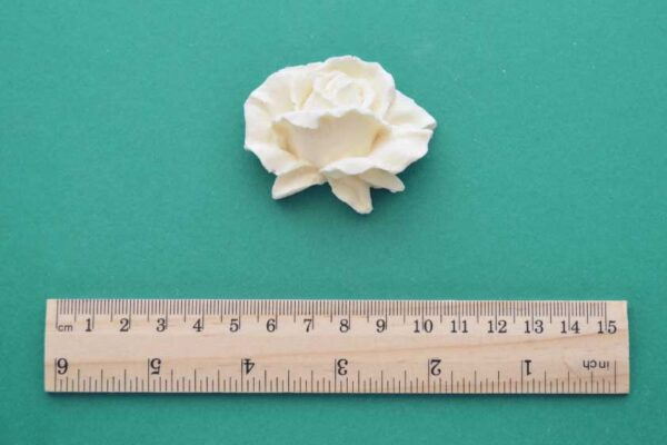 Detailed Medium Rose Moulding
