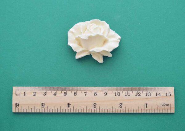 Detailed Medium Rose Moulding