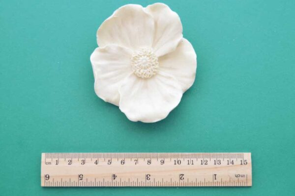 Large Wild Rose Moulding