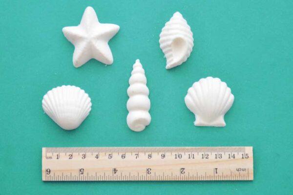 Beach Shells Mouldings Set