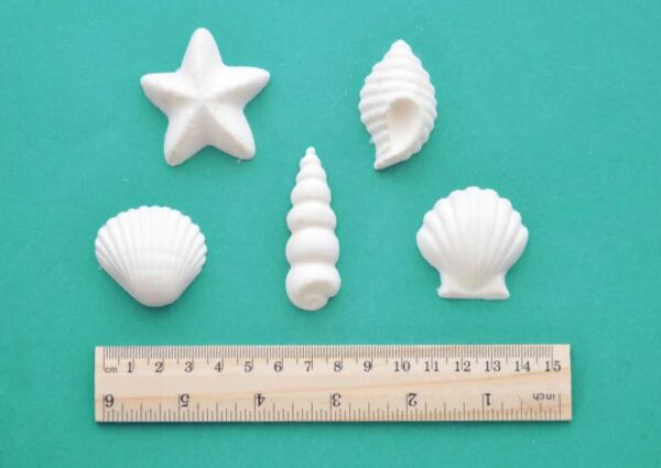 Beach Shells Mouldings Set
