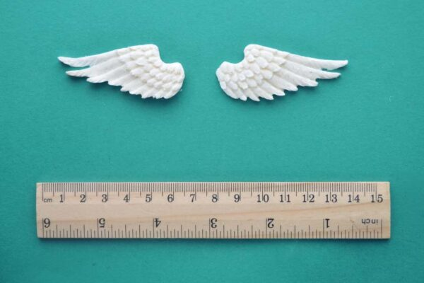 Pair of Small WIngs