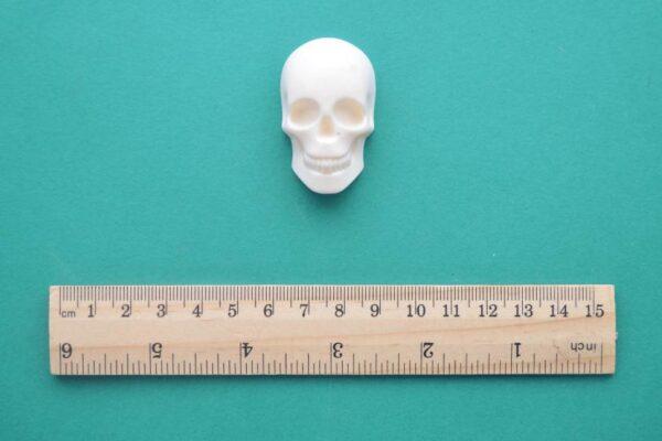 Small Skull Resin Moulding